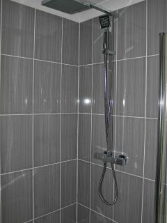with large overhead shower