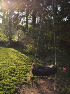 Garden tyre swing