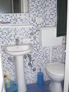 Shower room with special bidet shower