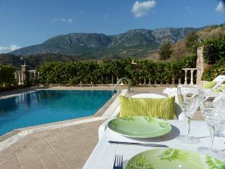 Luxury Villa + Pool (V8), Alanya