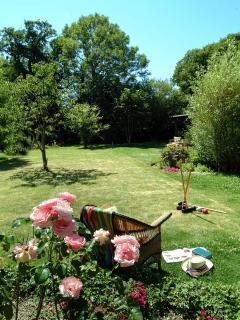 Garden and lawns