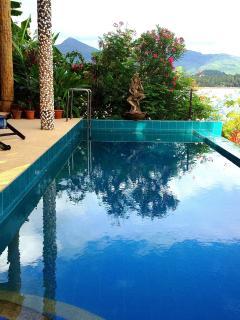 Salt Water Infinity Pool, NO Poisonous Chlorine or Bromine,