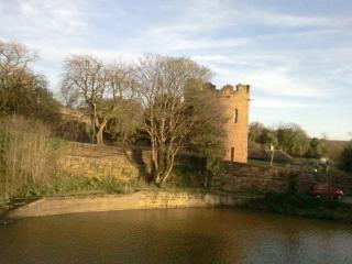 Your view of the Roman Walls and Water Tower by day