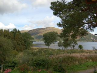 Loch Etive View