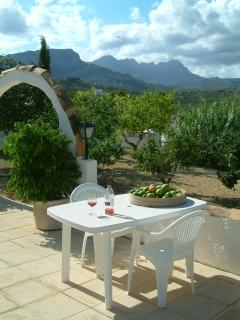 The pool terrace, with views of our citrus trees and to mountains beyond