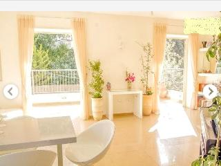 Luxury 3BR +spacious terrace at Rehavia