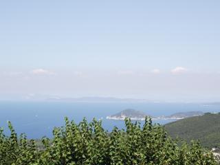5 bedroom hotel apartment on stunning Elba Island, great views, Marciana