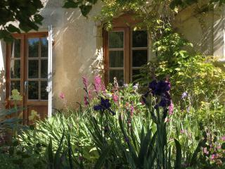 Early Summer Glory - Irises & Fuchsias adorn the front of the Cottage
