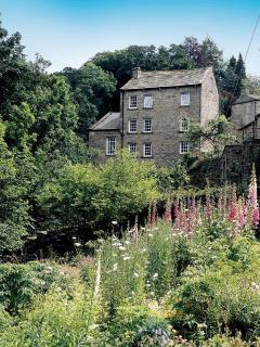 The Mill from down stream