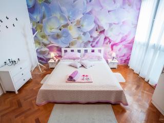 Zadar City Studios