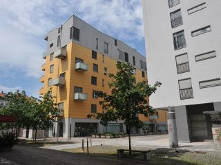 1BD apartment with AC and garage - Anita Tour As, Liubliana