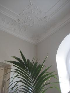 Detail of the ceiling moulding in the main living room