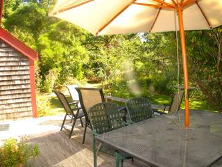 Martha's Vineyard Rental In Nat's Farm! (74)