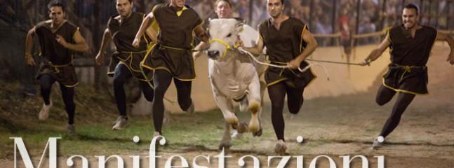 Montefalco 'Corsa del Bove' - August