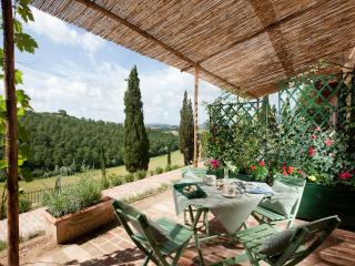 Rustic Tuscan holiday apartment rental with beautiful garden and shaded terrace, sleeps 4, Monteroni d'Arbia