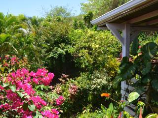Villa, giardino tropicale
