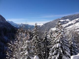 Apartment in mountain Chalet 9km from Interlaken