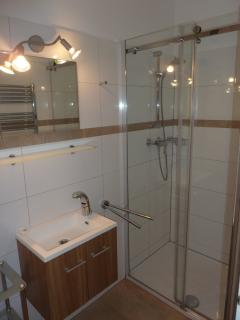 modern shower room with large shower