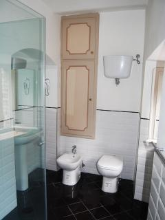 The bathroom has a large glass shower enclosure