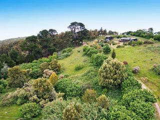 120 BIDDLES - Apollo Bay, VIC