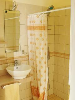 Walk in Shower rooms