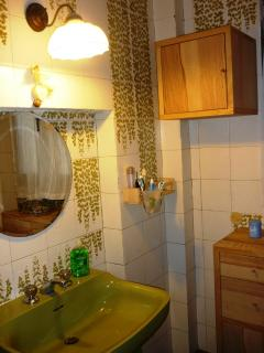 shower bathroom , ground floor