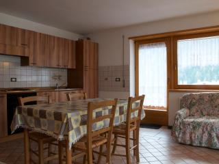 Tre Cime House, bright and panoramic, Auronzo di Cadore