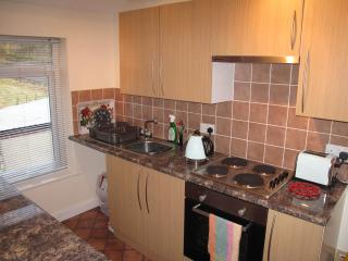 Well equipped kitchen with electric hob and oven, microwave, washer/dryer, kettle, toaster and iron