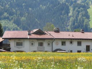 Landhouse Florian - Residence Kitzbuehel, St Johann in Tirol