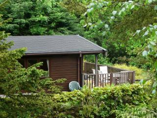 Mockerkin Tarn Luxury Log Cabin, Skelwith Bridge