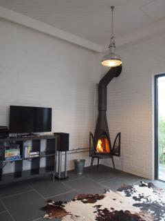 log burning stove and fantastic entertainment system