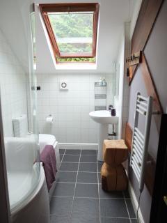 Modern bathroom with powerful overhead shower