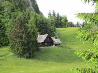 Chalet on Pokljuka, Triglav NP, Robinson location, Bohinjska Bela