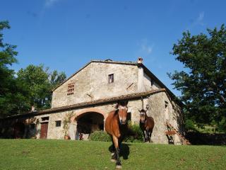 Antico casolare in Alto Mugello (Passo Futa), Firenzuola