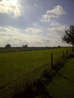 Vieuw field