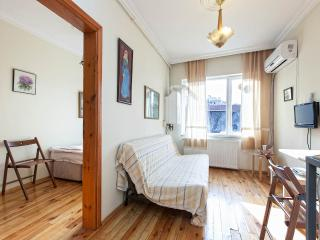 Budget One-Bedroom Apartment 2, Istambul