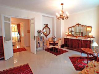 Elegant 2 bedroom apartment in central Nice, sleeps 2 to 6 - close to Promenade