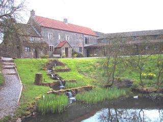 Swallet Farm, Cheddar