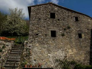 A Casa Irene - a cozy cottage with private garden, Colognora