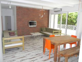 ASJA new modern spacious apartment with terrace, Belgrado