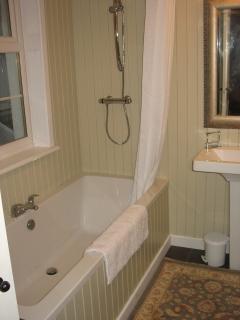 Modern Bathroom and shower off Master bedroom
