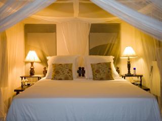 Luxurious Main Bedroom
