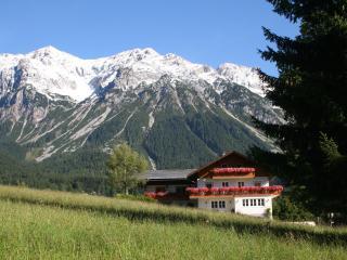 Haus Heidi - Enzian Apartment, Ramsau am Dachstein