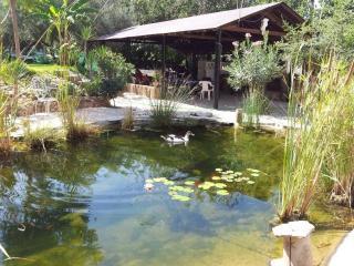 Casa rural aguas de munigua, Villanueva del Rio y Minas