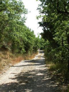 The track to Gianesi