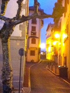 Flavour of the town at night. Cobblestone streets; great restaurants and shopping! Safe and quaint!