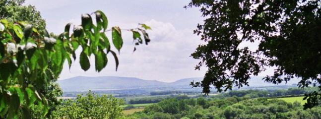 view from Lakeview Rise towards Dartmoor
