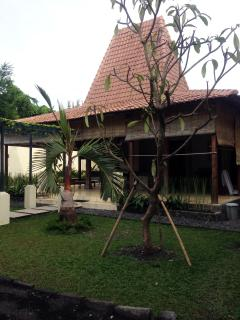 Green & Lush Tropical Garden