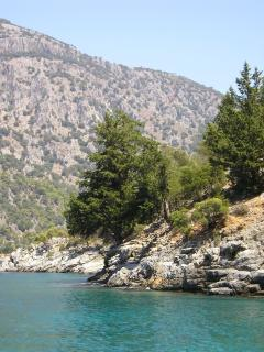 Beautiful coves to explore out to sea on your own booked boat