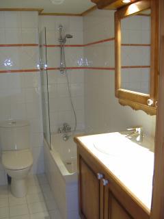 Downstairs en suite/bathroom